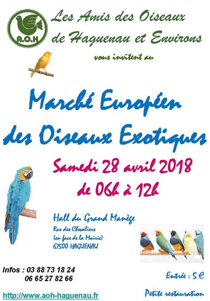 Affiche marché européen des oiseaux exotiques 2018
