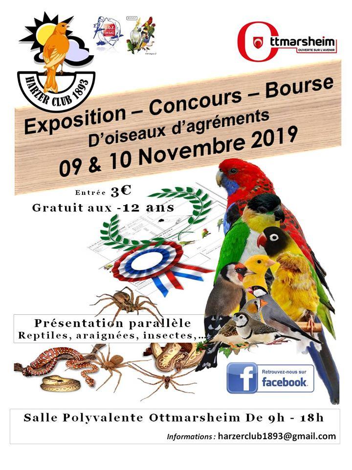 Exposition concours HC1893 2019