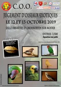 affiche-jugement-COO-2019